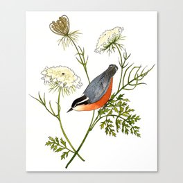 Nuthatch and Carrot Canvas Print