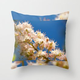Macro of blooming Aesculus Throw Pillow