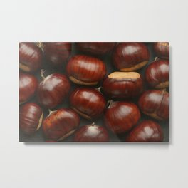 Autumn Chestnuts Metal Print