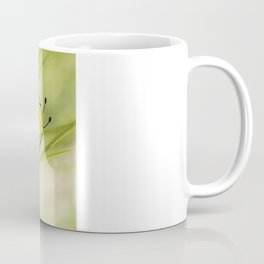 Beetle Coffee Mug