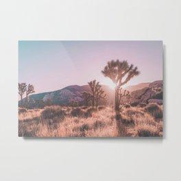 Southwest California Metal Print