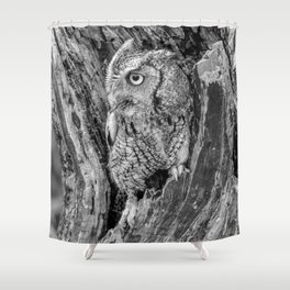 Echo the Screech Owl by Teresa Thompson Shower Curtain