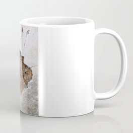 Wall straw bales Coffee Mug