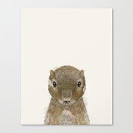 little squirrel Canvas Print