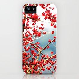 Hawthorn Tree iPhone Case