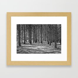 Lost in the Woods Black & White Framed Art Print