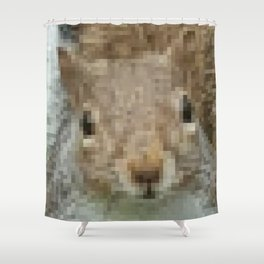 The other faces of Squirrel 4 Shower Curtain