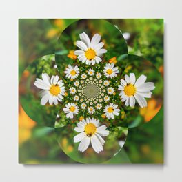 Magic Field Summer Grass - Chamomile Flower with Bug - Polarity #1 Brightly Metal Print