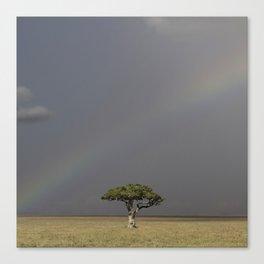 Under the rainbow Canvas Print