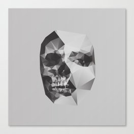 Life & Death. Canvas Print