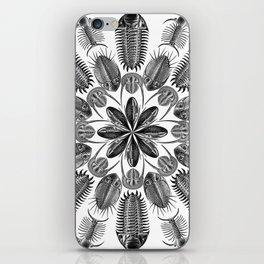 Trilobite and Fossil Mandala, Collage using Ernst Haeckel illustrations iPhone Skin