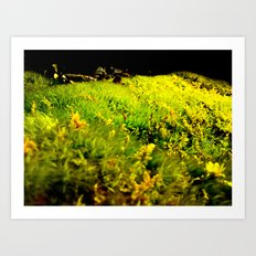 Microcosmic field Art Print
