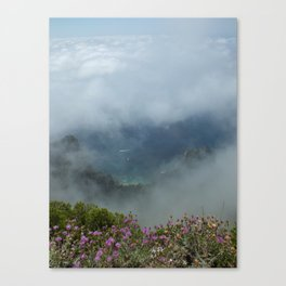 The View from Heaven Canvas Print