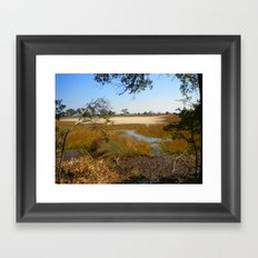 Beautiful Swamp Framed Art Print
