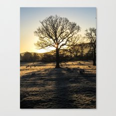 Winter#3 Canvas Print