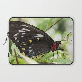 Butterfly Birdwing Laptop Sleeve