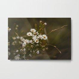 A Flower in Autumn Metal Print
