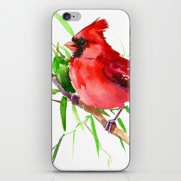 Cardinal Bird iPhone Skin