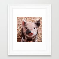piglet Framed Art Prints featuring Sweet piglet by MehrFarbeimLeben
