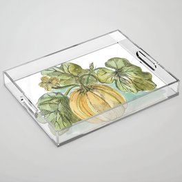 Antique Botanical Sketch Pumpkin Acrylic Tray