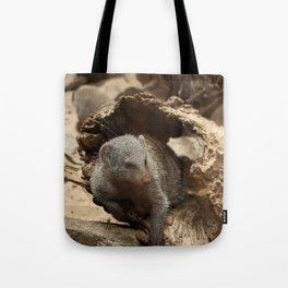 Maxin' N Relaxin' Tote Bag