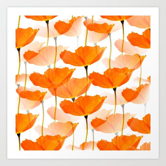 Orange Poppies On A White Background #decor #society6 #buyart Kunstdrucke