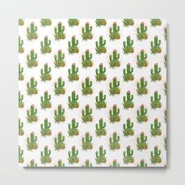 Cacti and succulents arrangement Metal Print