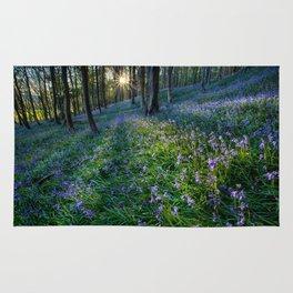 Bluebell sunset at Margam woods Rug