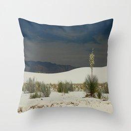 Desert Beauty Throw Pillow
