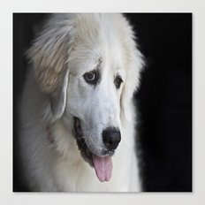 Great Pyrenees -Forest- Canvas Print