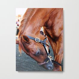 Kentucky Derby Winner Funny Cide Metal Print