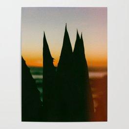 Mexican Agave Sunset Poster