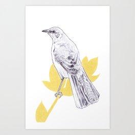 Mockingbird Song Art Print