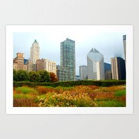 Chicago From The Park Art Print