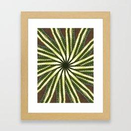 Cactus Garden Kaleidoscope 10 Framed Art Print