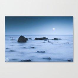 Mare Tranquillitatis Canvas Print