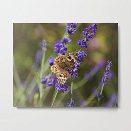 Lavender Landing Metal Print