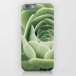 Green Succulent Photo iPhone Case