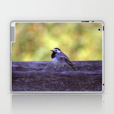 White Wagtail 4123 Laptop & iPad Skin