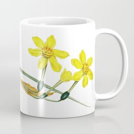 Narcissus Grow Where You're Planted Daffodils in Spring Coffee Mug
