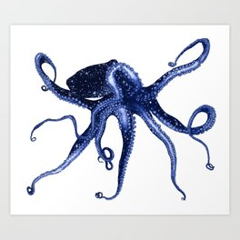 Cosmic Octopus II Art Print