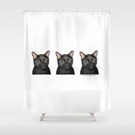 Triple Black Cat on White Shower Curtain