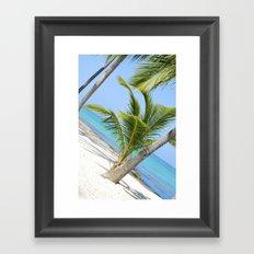 Beach Wonders.  Framed Art Print