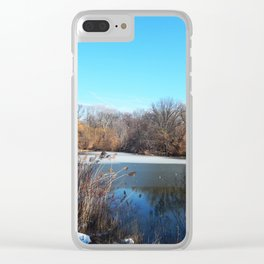 Winter in Central Park, NYC Clear iPhone Case