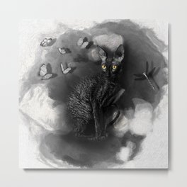 Cornish Rex No 10 Metal Print