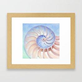 Nautilus Shell Spirals Framed Art Print