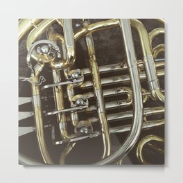 LE HORN Metal Print