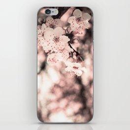 Sweet Spring (White Cherry Blossom) iPhone Skin