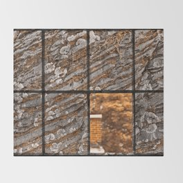 Petrified Window Throw Blanket