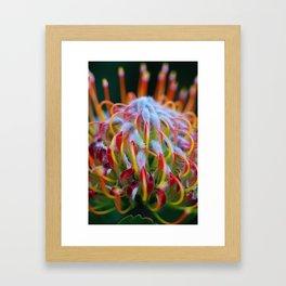 Hue Framed Art Print